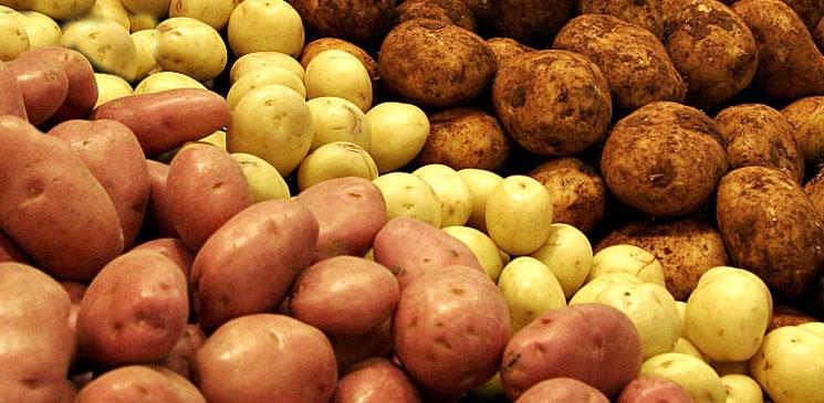 у картофеля есть семена